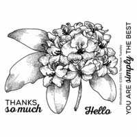 Technique Tuesday - Greenhouse Society Collection - Clear Photopolymer Stamps - Rhododendron