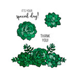Technique Tuesday - Greenhouse Society Collection - Clear Acrylic Stamps - Sweet Succulents