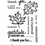 Technique Tuesday - Clear Acrylic Stamps - I Give Thanks