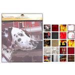 Uniformed Scrapbooks of America - 12 x 12 Paper Pack - Fire and Rescue