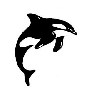 Leaky Shed Studio - Animal Collection - Cardstock Die Cuts - Large - Orca