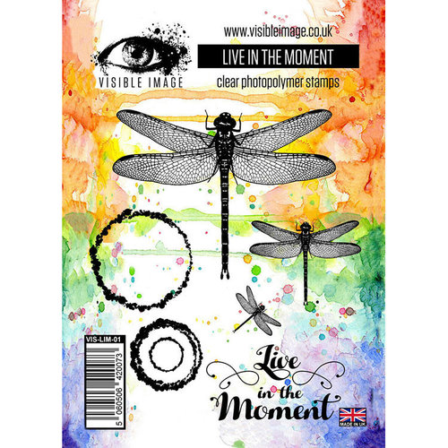 Visible Image - Clear Acrylic Stamps - Live In The Moment