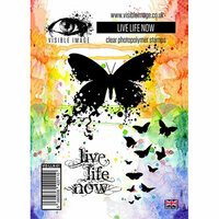 Visible Image - Clear Acrylic Stamps - Live Life Now