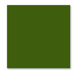 WorldWin - ColorMates - 12 x 12 Cardstock Pack - 50 Sheets - Deep Spring Green