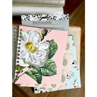 Websters Pages - Color Crush Collection - Snap In Decorative Dividers - Small