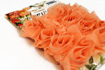 Websters Pages - Bloomers - Flower and Trim Ribbons - Peach