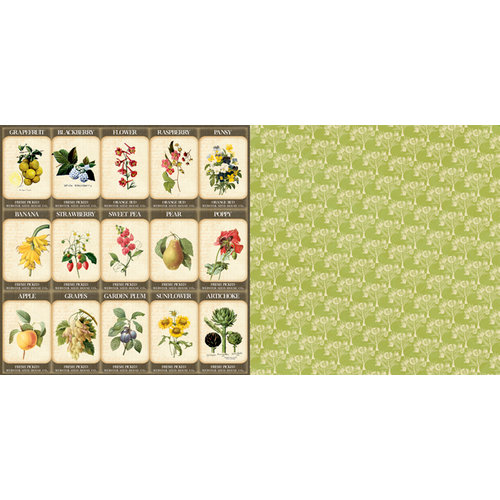 Websters Pages - Spring Market Collection - 12 x 12 Double Sided Paper - Gardener's Seeds