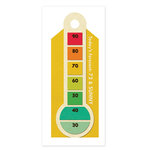 We R Memory Keepers - 72 and Sunny Collection - Embossed Tags - Forecast, CLEARANCE
