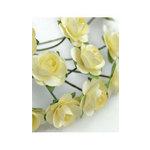 Zva Creative - 7/8 Inch Paper Roses - Bulk - Cream, CLEARANCE