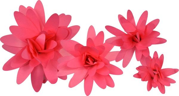 Little b paper flower bright pink daisy petal kits little b paper flower petal kits bright pink daisy mightylinksfo