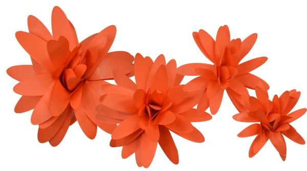 Little b paper flower orange daisy petal kits little b paper flower petal kits orange daisy mightylinksfo