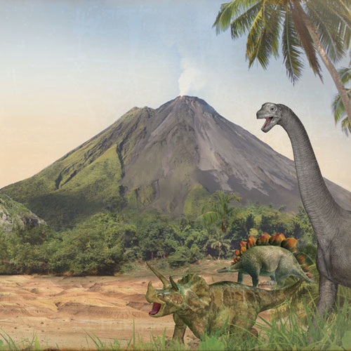dinosaurs research paper Non‐avian dinosaurs went extinct 66 million years ago, geologically coincident with the impact of a large bolide (comet or asteroid) during an interval of massive volcanic eruptions and changes in temperature and sea level there has long been fervent debate about how these events affected dinosaurs.