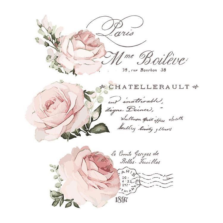 Prima Re Design Chatellerault Transfer