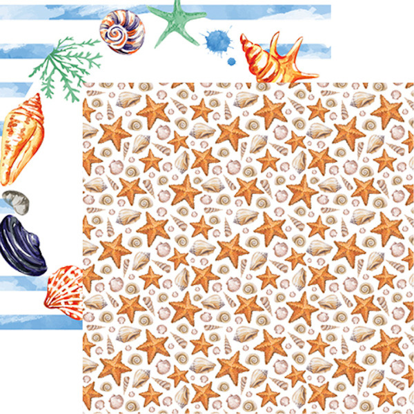 Reminisce Seaside Watercolor Seashells Paper