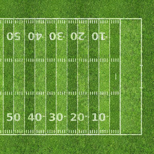 Scrapbook Customs Sports Football Field 2 Right Paper