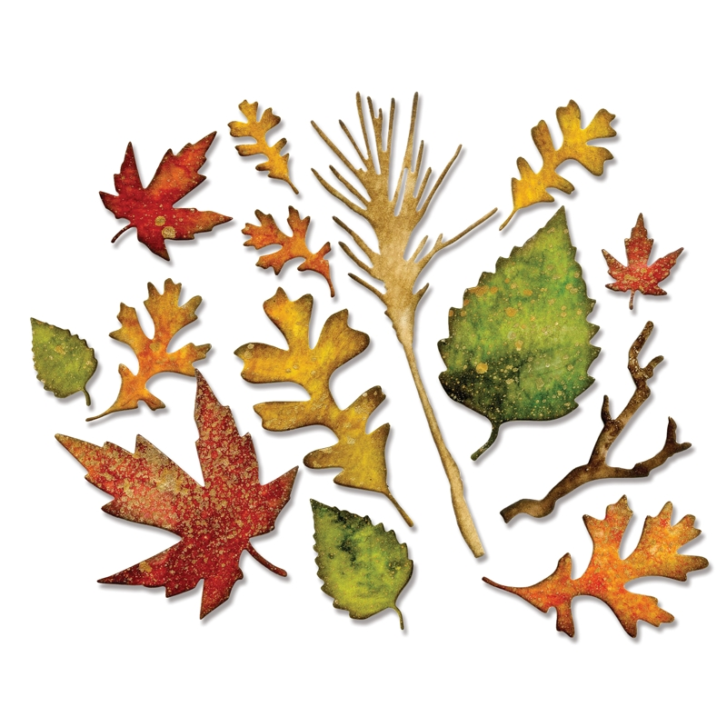 Sizzix Tim Holtz Alterations Fall Foliage Thinlits Die