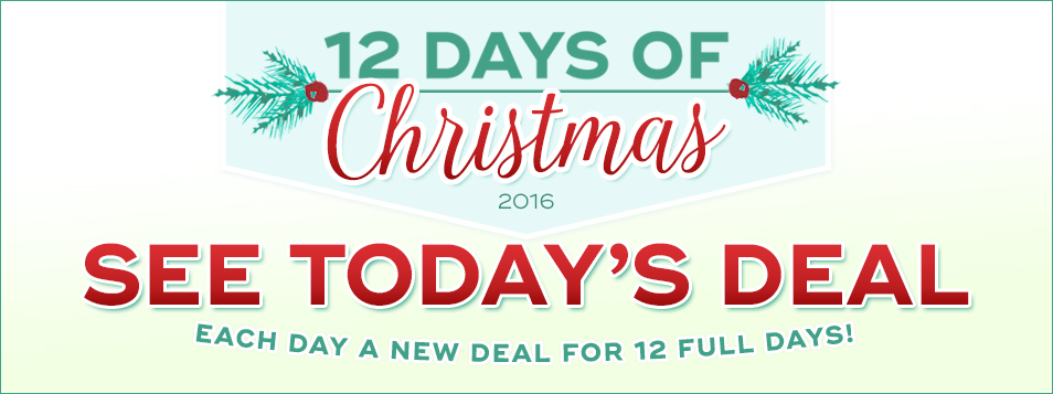 ALL 12 DAYS Each Day a New Deal 2016 Christmas