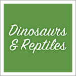 Dinosaurs and Reptiles